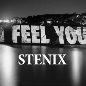 STENIX - I Feel You